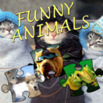 Jigsaw Puzzle: Funny Animals
